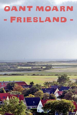Operatieassistent Friesland